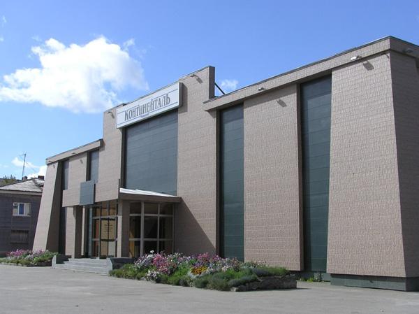 Виды и применение фиброцементных плит для фасадов частных домов 2